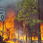 Cerro Grande fire, May 2000 | Los Alamos National Laboratory